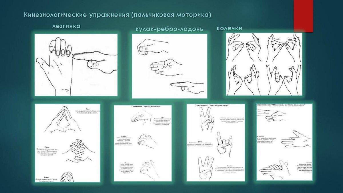картинки по нейрогимнастике что приходит