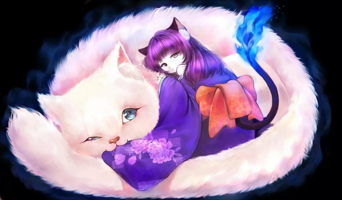 Днем, аниме с котами картинки с надписями