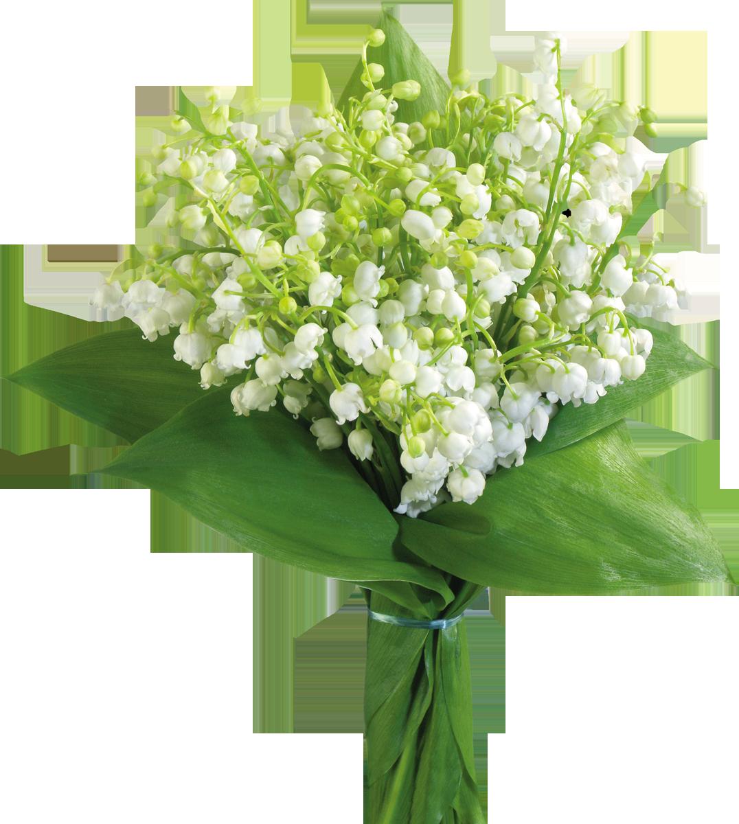 Открытка цветы ландыши, утро будет добрым