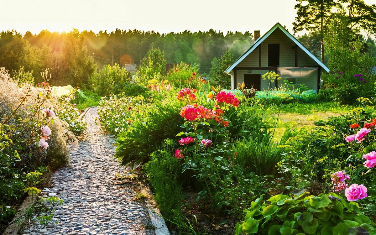 Садовые участки в картинках