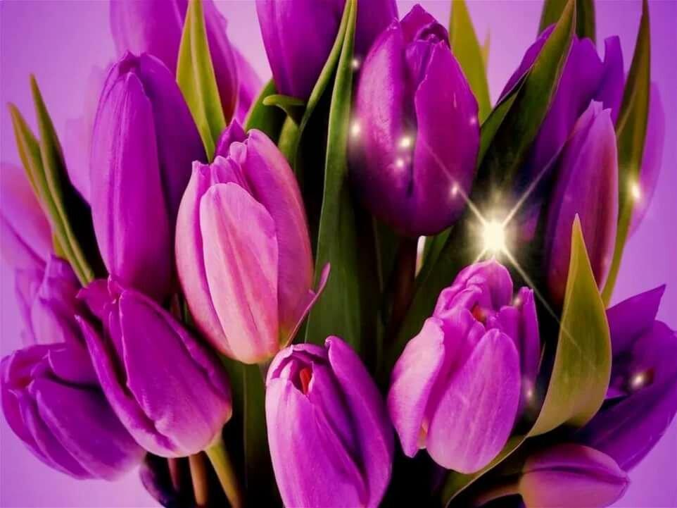 Открытки тюльпаны для подружки, открытку своими