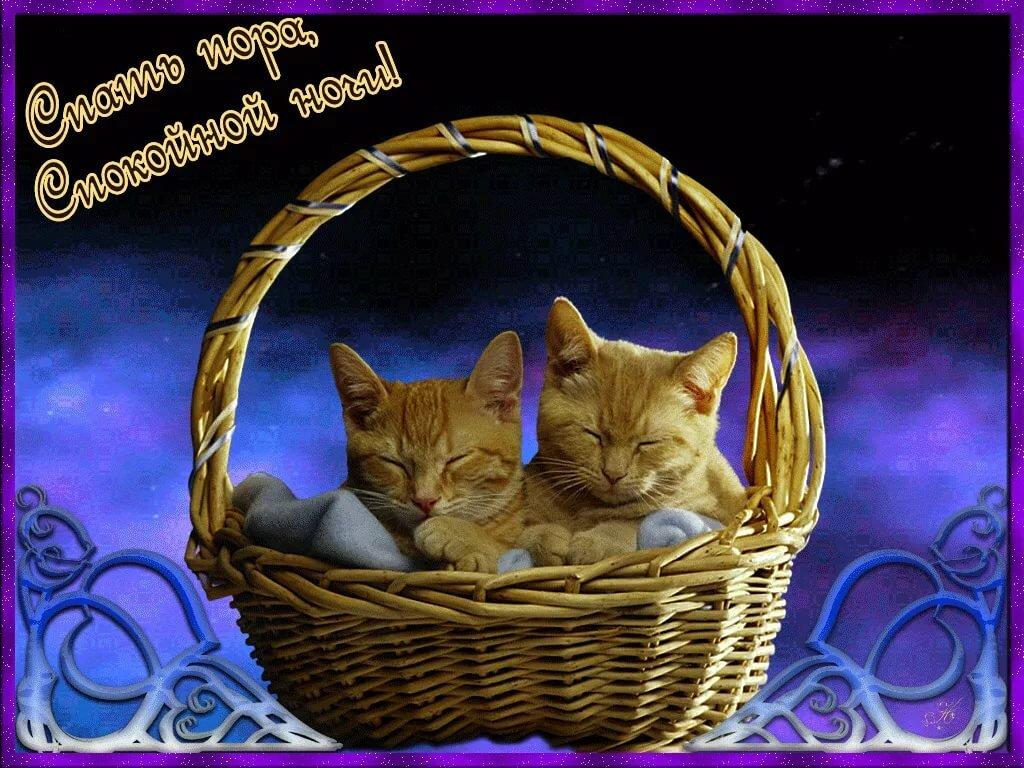Крепкого здоровья и отличного настроения открытки спокойной ночи