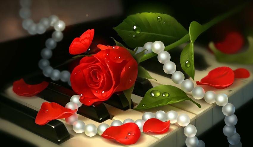 Фото с розами и надписью шикарной женщине, ватсап айфон открытки
