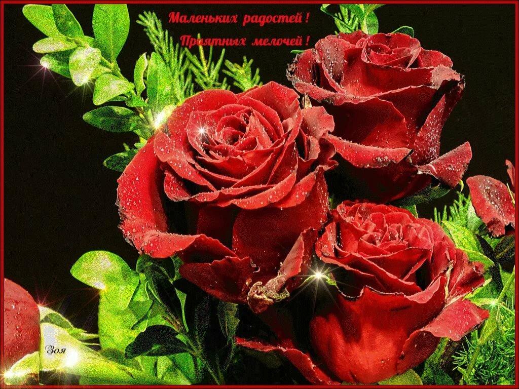 Яндекс открытки с розами, про пятницу