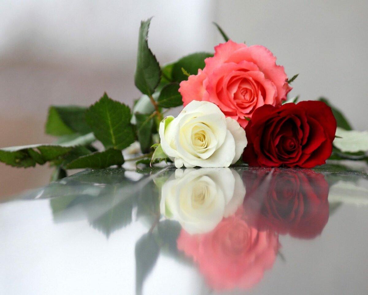 Картинка с цветами для татьяны, лапин открытки
