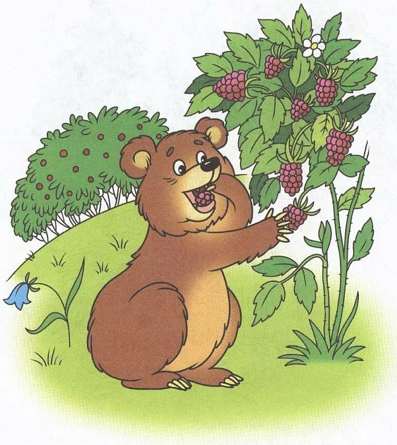 Коза, медведь в картинках для детей
