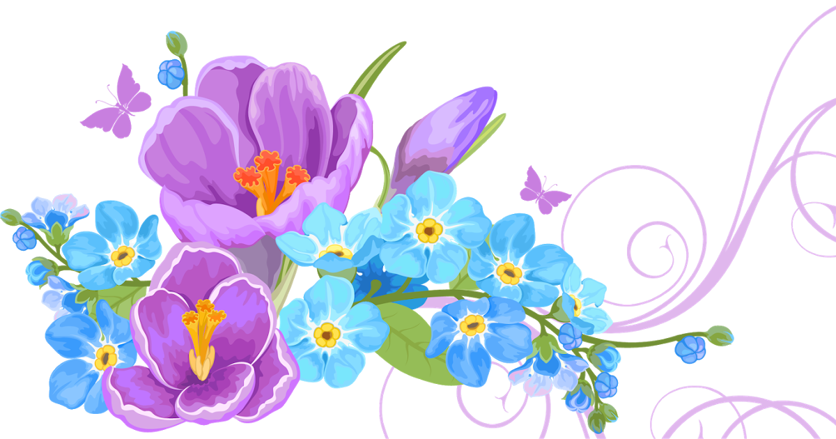 Открытки с цветами корел, картинки для одноклассников