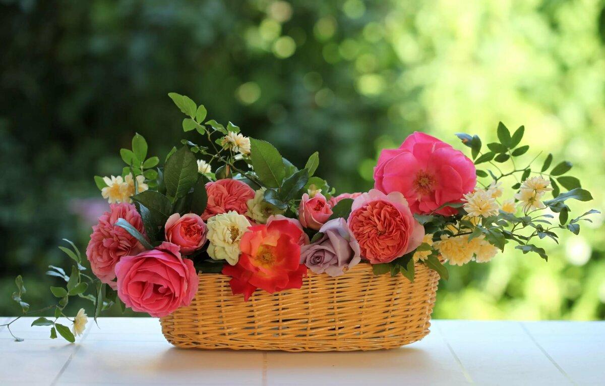 Открытки с днем рождения с садовыми цветами, открытка для