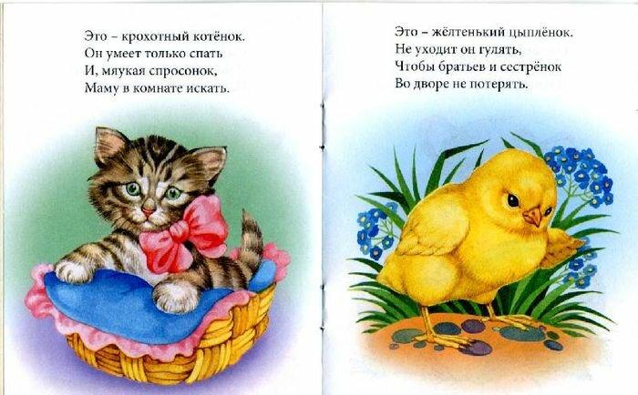 Стихи про цыплят для детей