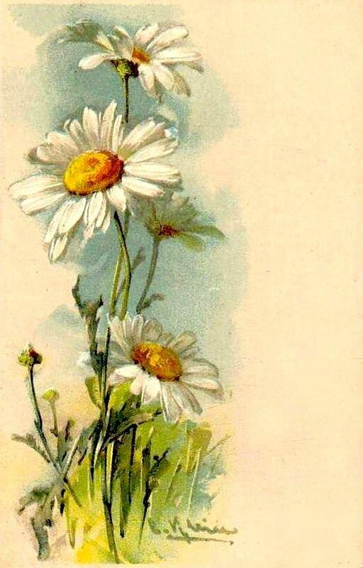 Праздником пасхи, открытки старые с ромашками