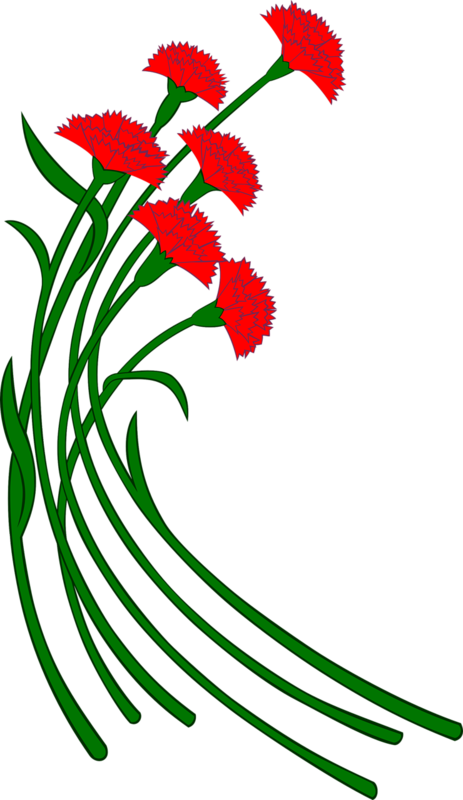 получается поздравительные картинка цветы для 23 февраля и мно в имо вам безразлична судьба