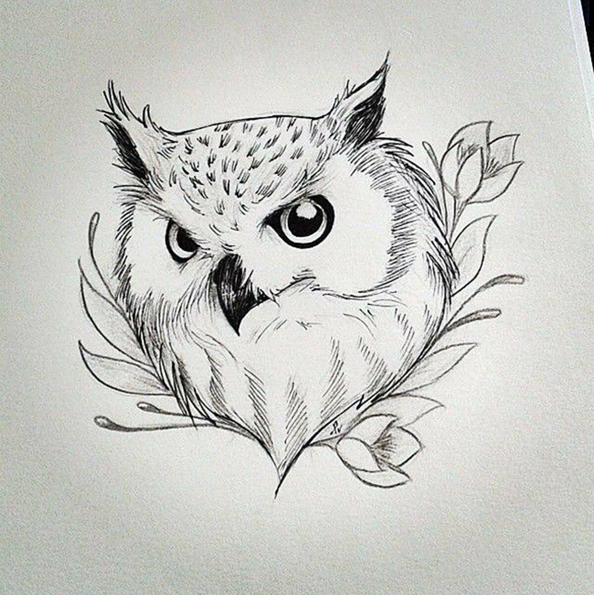 Картинки тату совы на листе