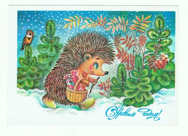 Жебелева открытка