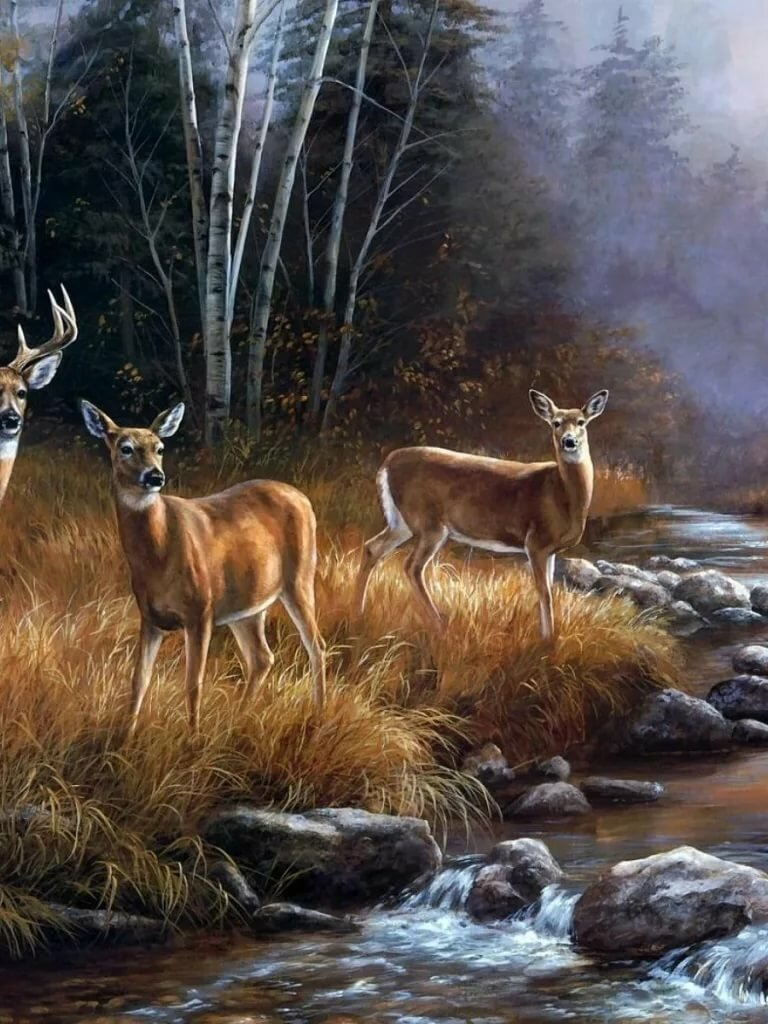 Картинки и анимации животных и природа