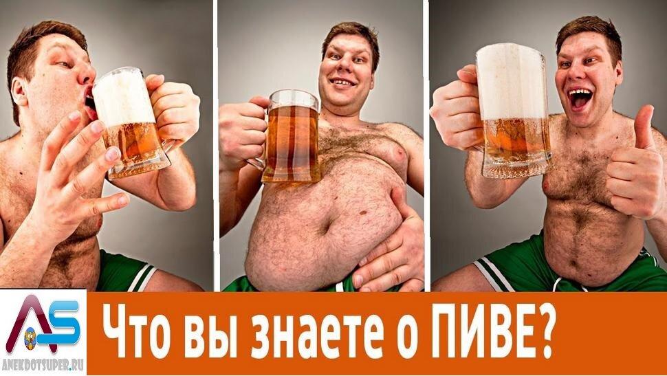 сшивает расписывает что будет если много пить пиво картинки талантливый человек большим