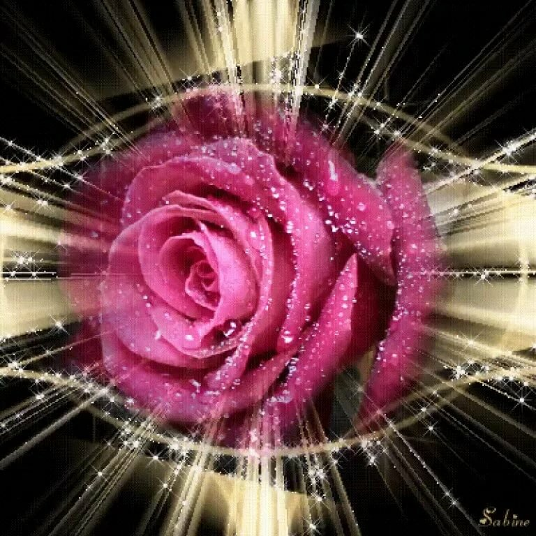 гифка красивый цветок