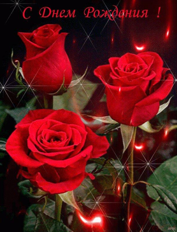 Открытки с днем рождения женщине тамаре красивые мерцающие, поздравления днем бухгалтера