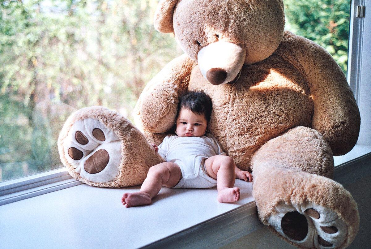 Открытках любовные, картинки с плюшевым медвежонком прикольные