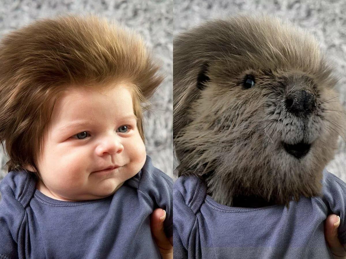 Самая смешная картинка с малышом