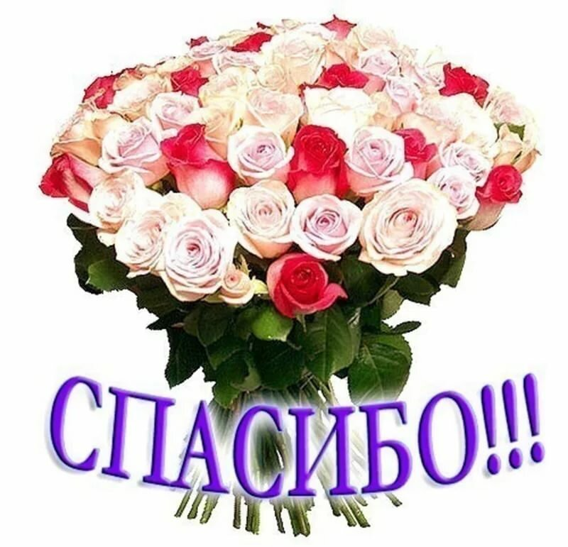 Медведями 8-марта, картинки цветок с надписью спасибо
