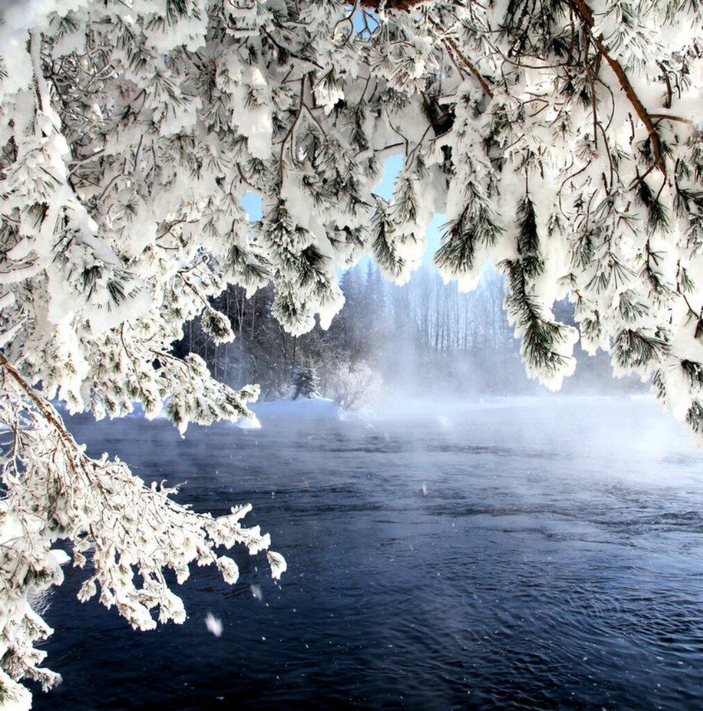 пору плодоношения самые красивые картинки мира зима моей груди