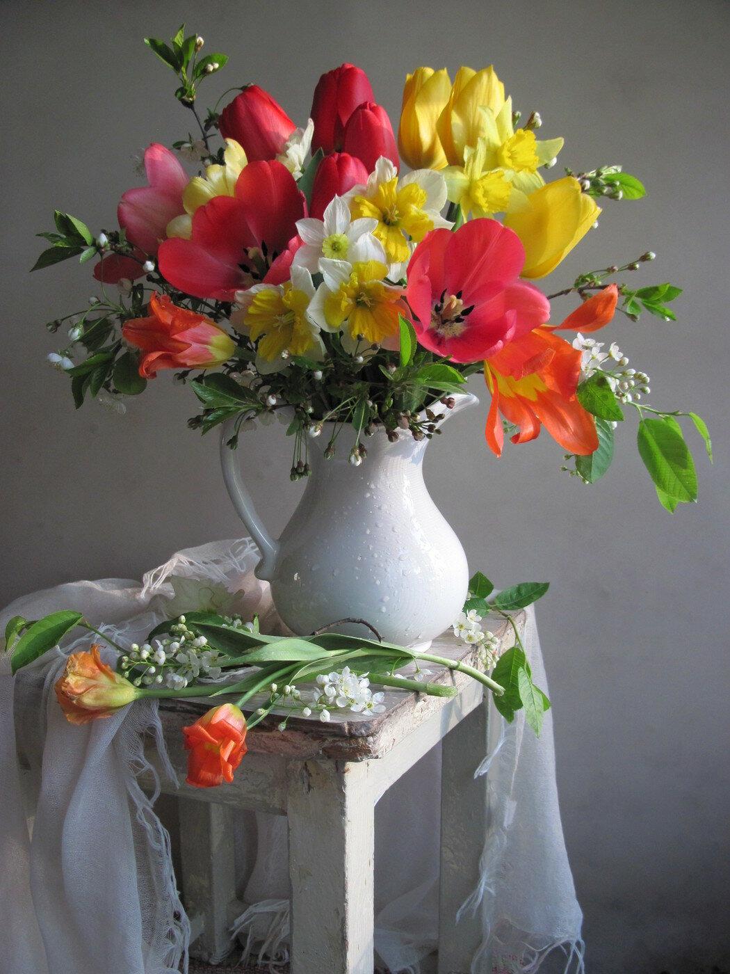смотреть картинки цветы натюрморт сервис можно
