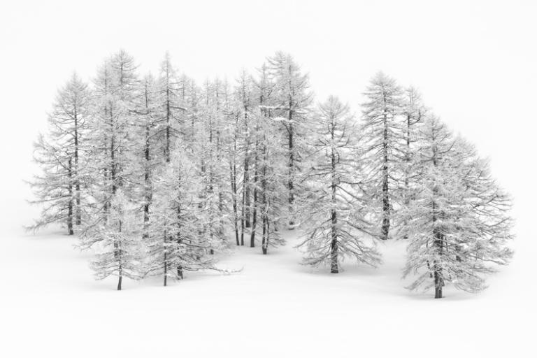Зима картинки без фона