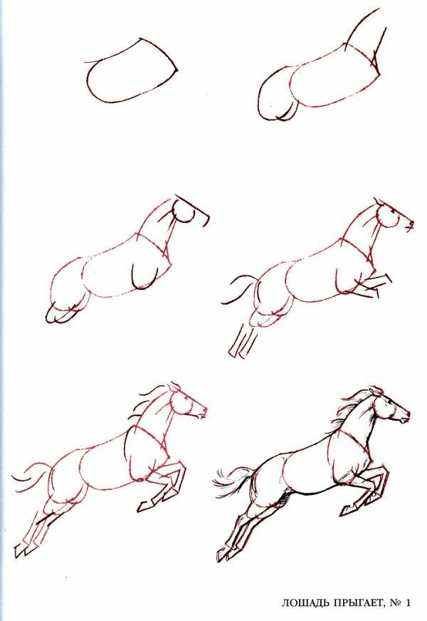 Смотреть картинки как нарисовать лошадь