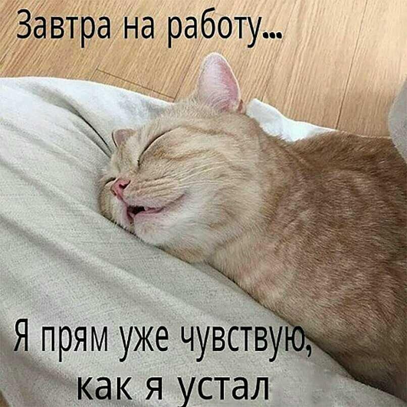 Ты сегодня был уставший картинки