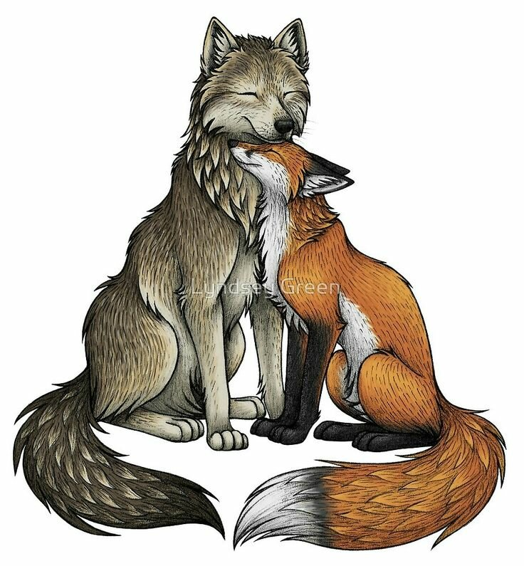 картинки я люблю волка от лисы узнать, как купить
