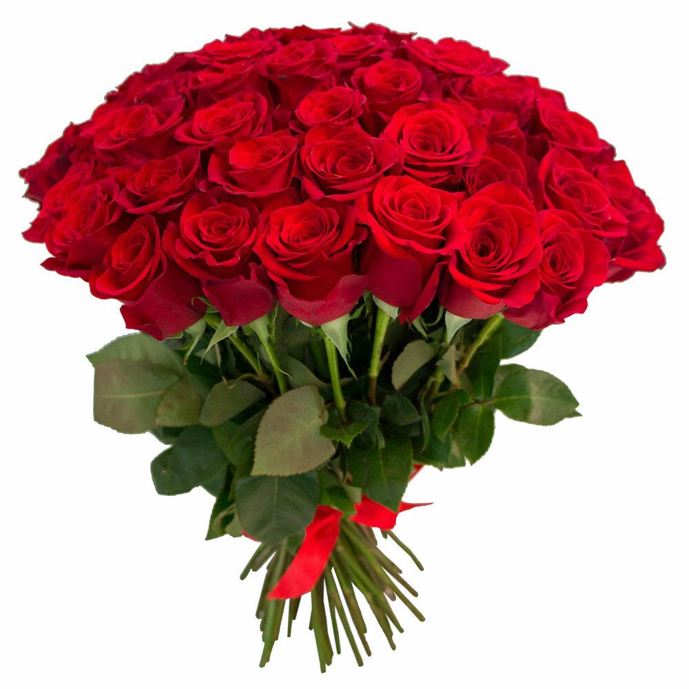 Добрым, картинки красивые букеты розы
