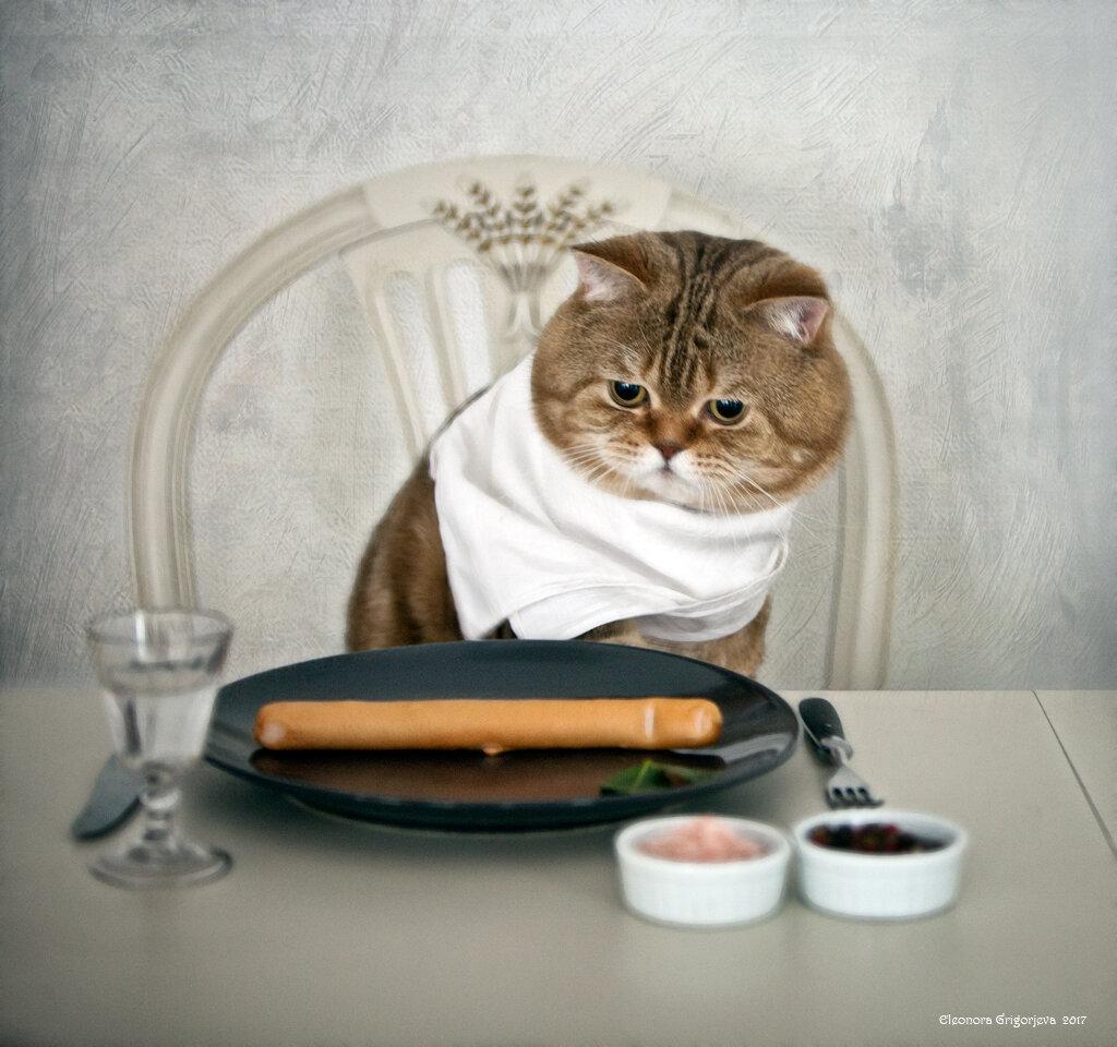 Гифки приятного аппетита смешные, декабря суббота прикольные
