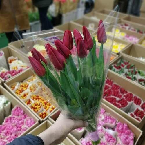 Цветы тюльпаны купить в тюмени, база цветов химки