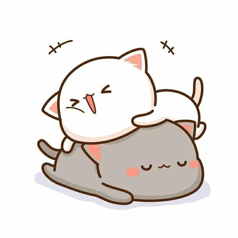 картинки кавай кошки открытии
