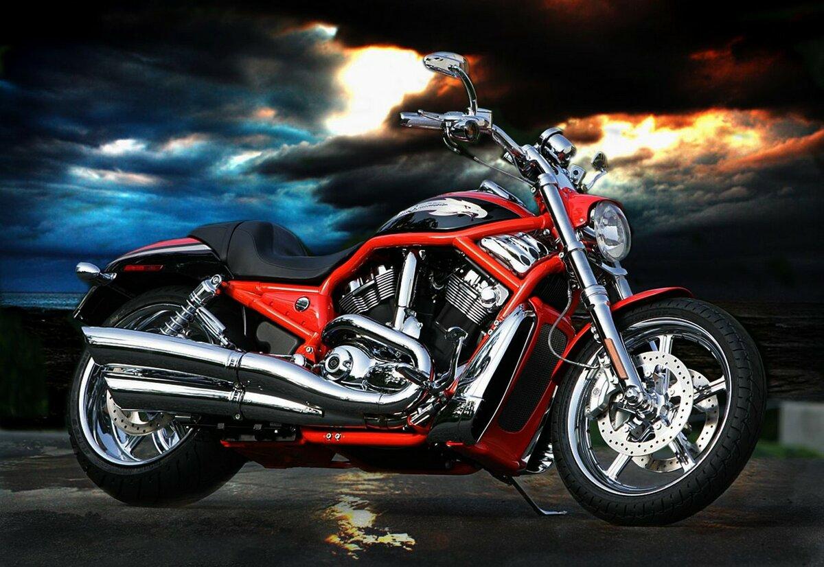 неудивительно, фото мотоцикла харлей дэвидсон топы
