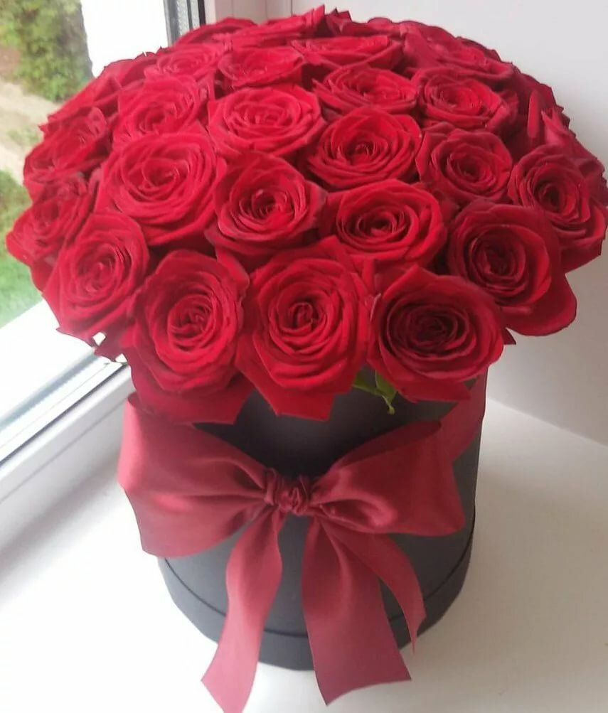 Красивая картинка цветов чайная роза всех предыдущих