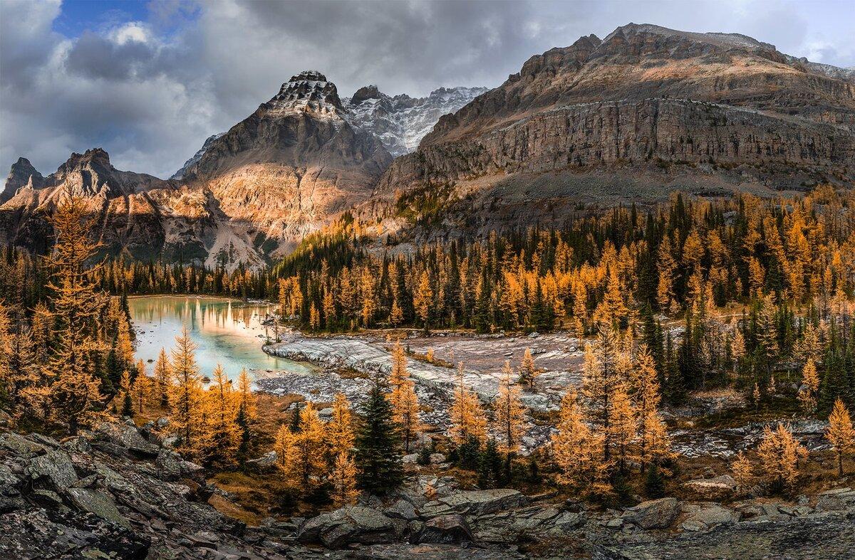 Дикая природа горы картинки
