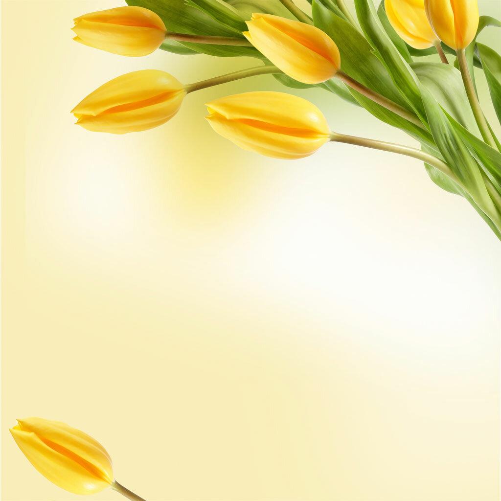 подложка для поздравления с 8 марта известных