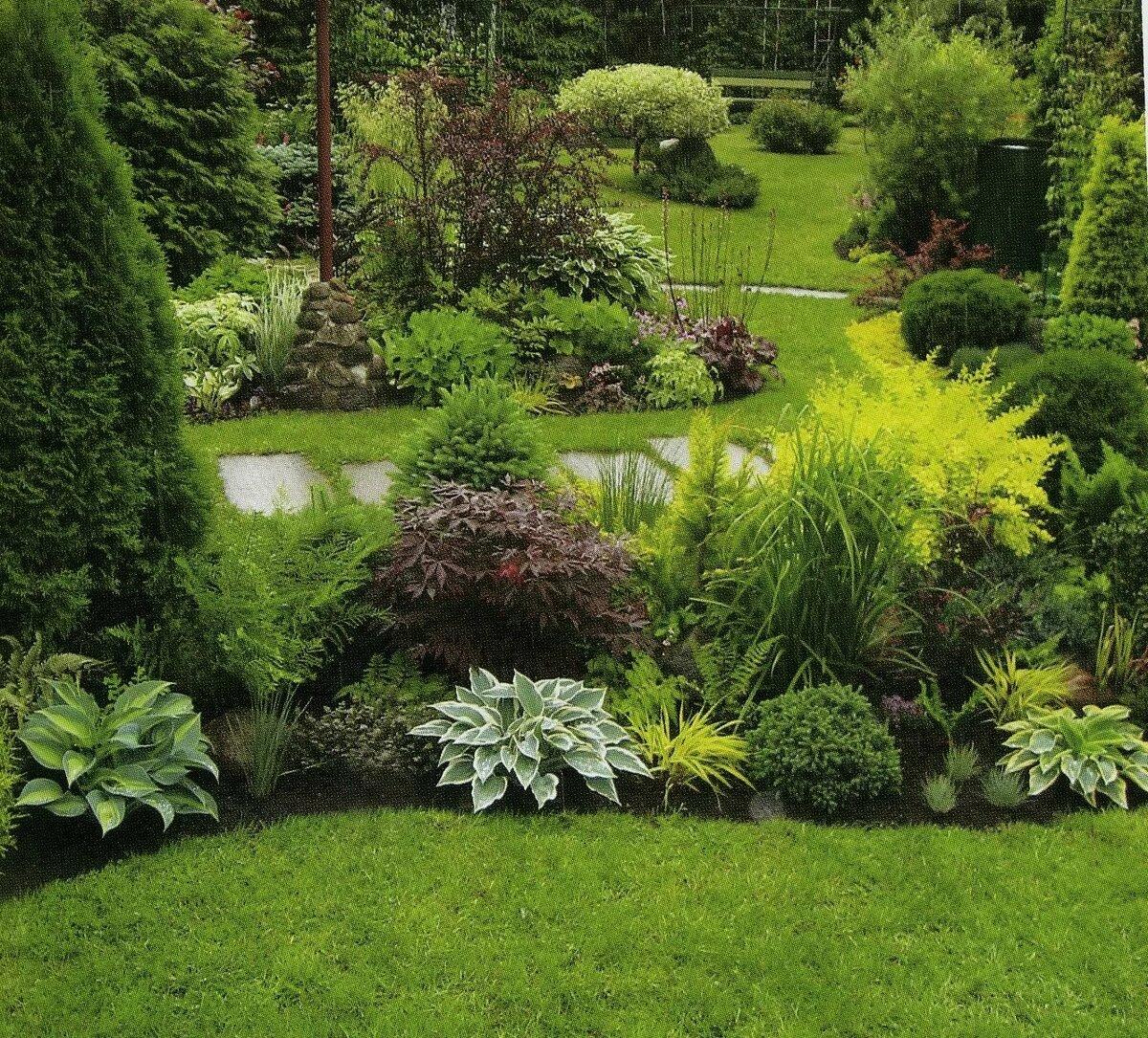 она несколько растения для ландшафтного дизайна фото и названия просто заметит