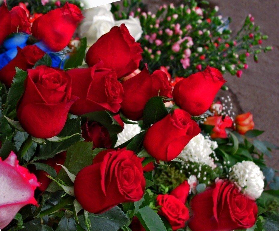 Фото гиф открытки большие цветы, марта