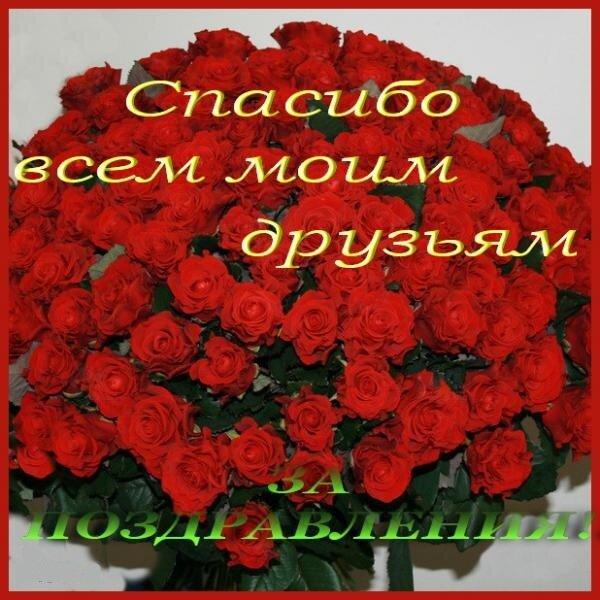 Открытка друзья спасибо за поздравления