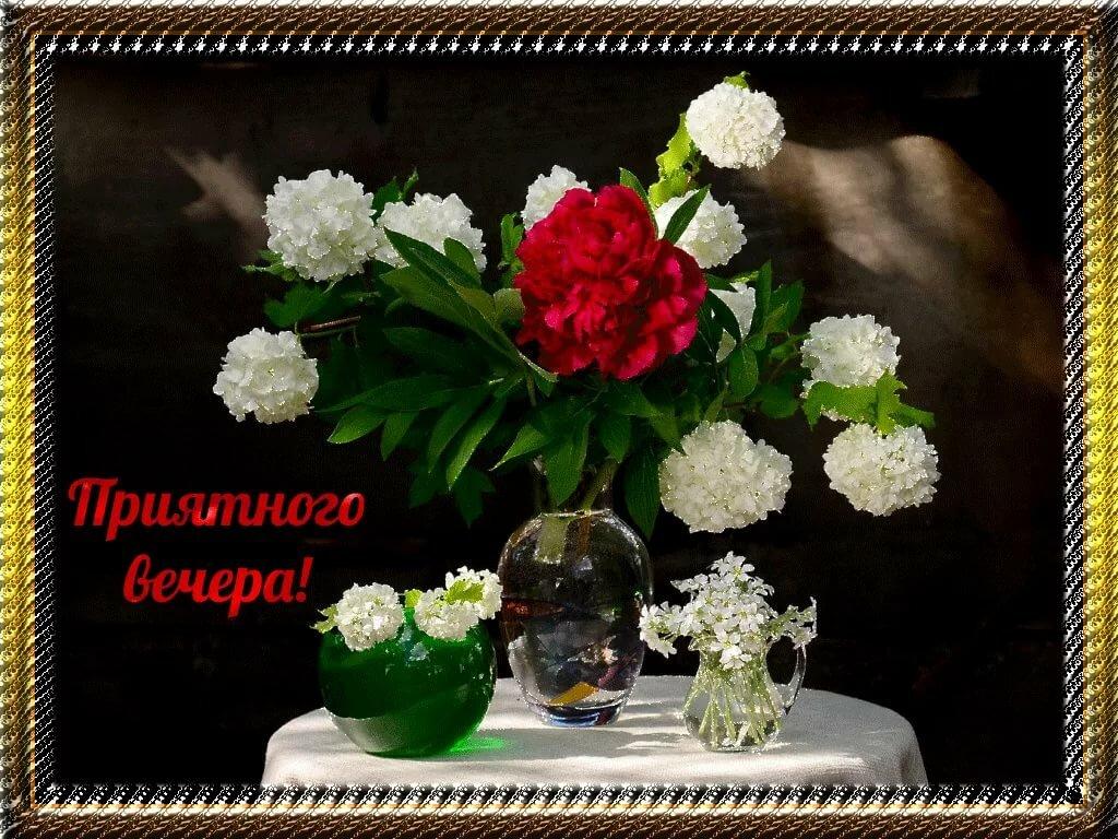 Ночи, открытка добрый весенний вечер и хорошего настроения
