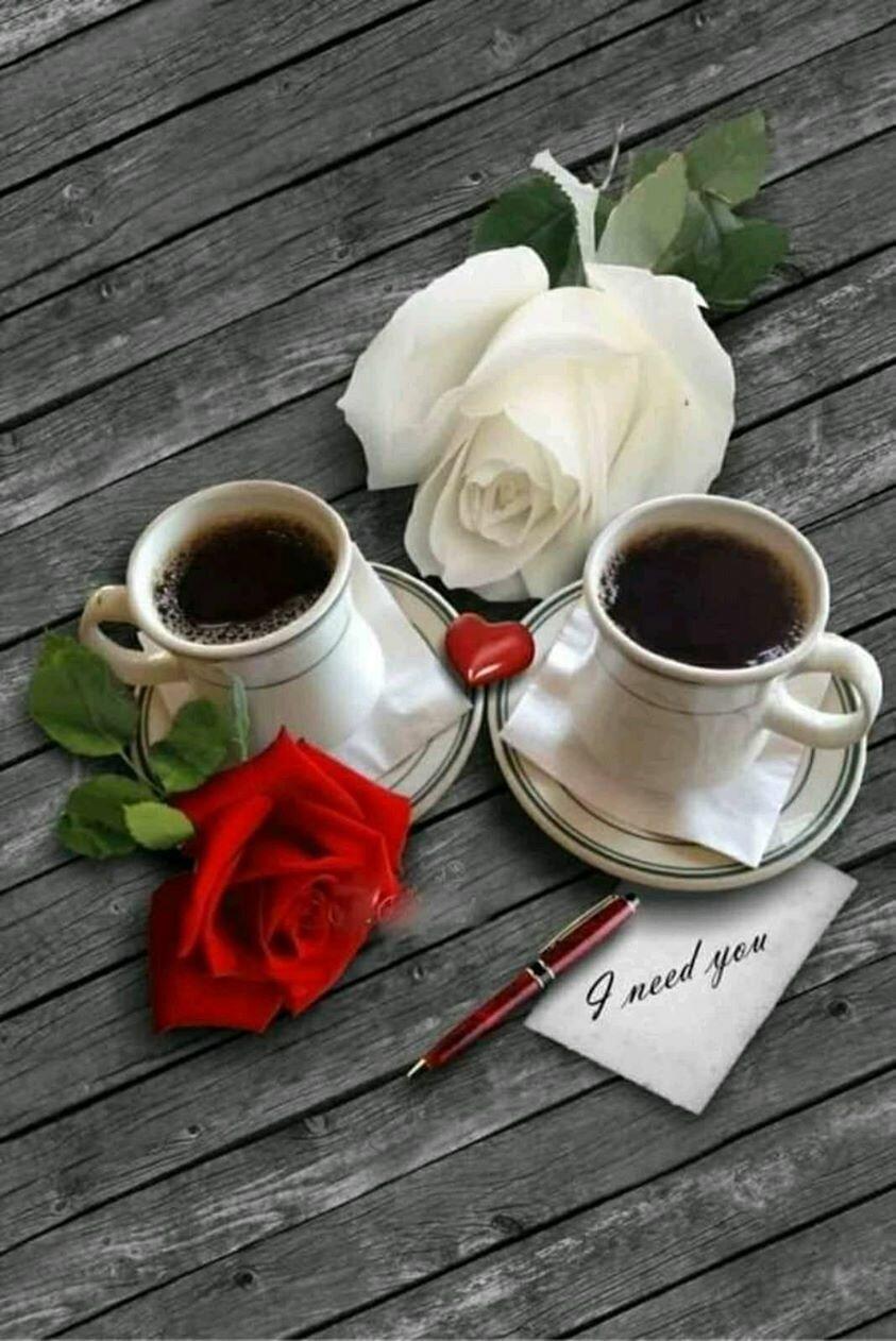качество, картинки кофе с розами при проверке