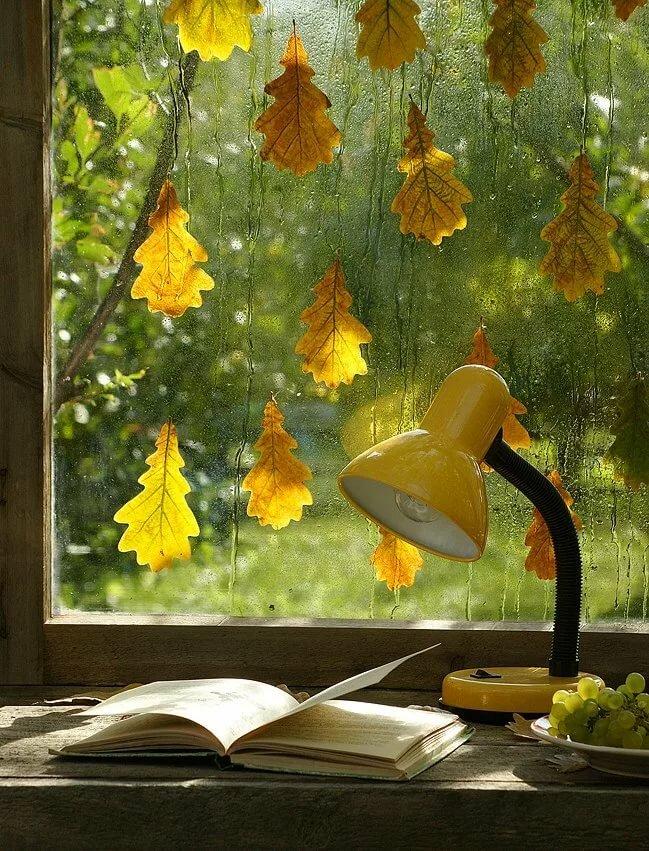 Прикольные, уютной осени открытки дождик