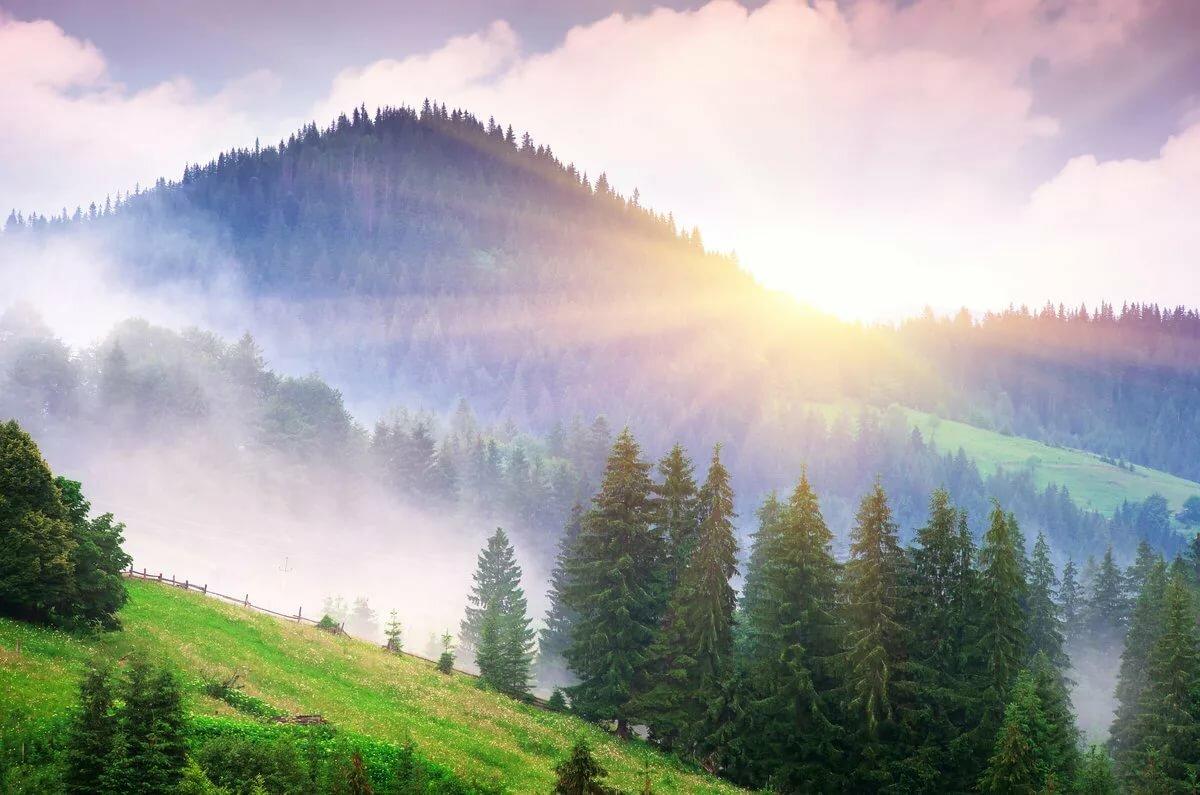 Рисунки, картинки утро природа красота