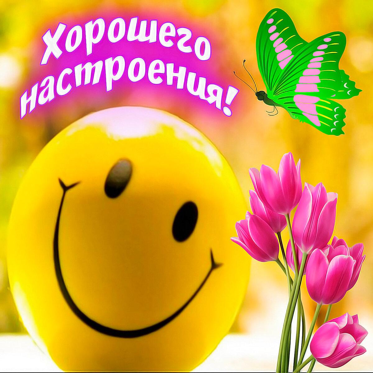 Картинка с надписью хорошего дня и отличного настроения