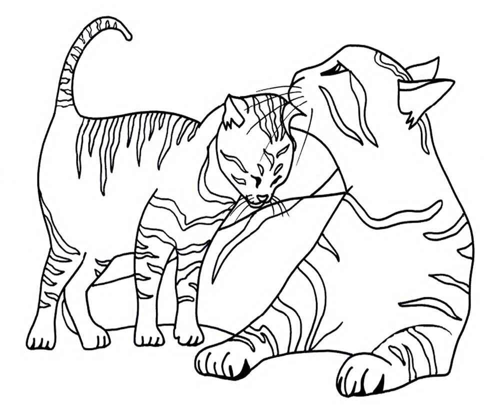 Летием, рисунки кошек и котят