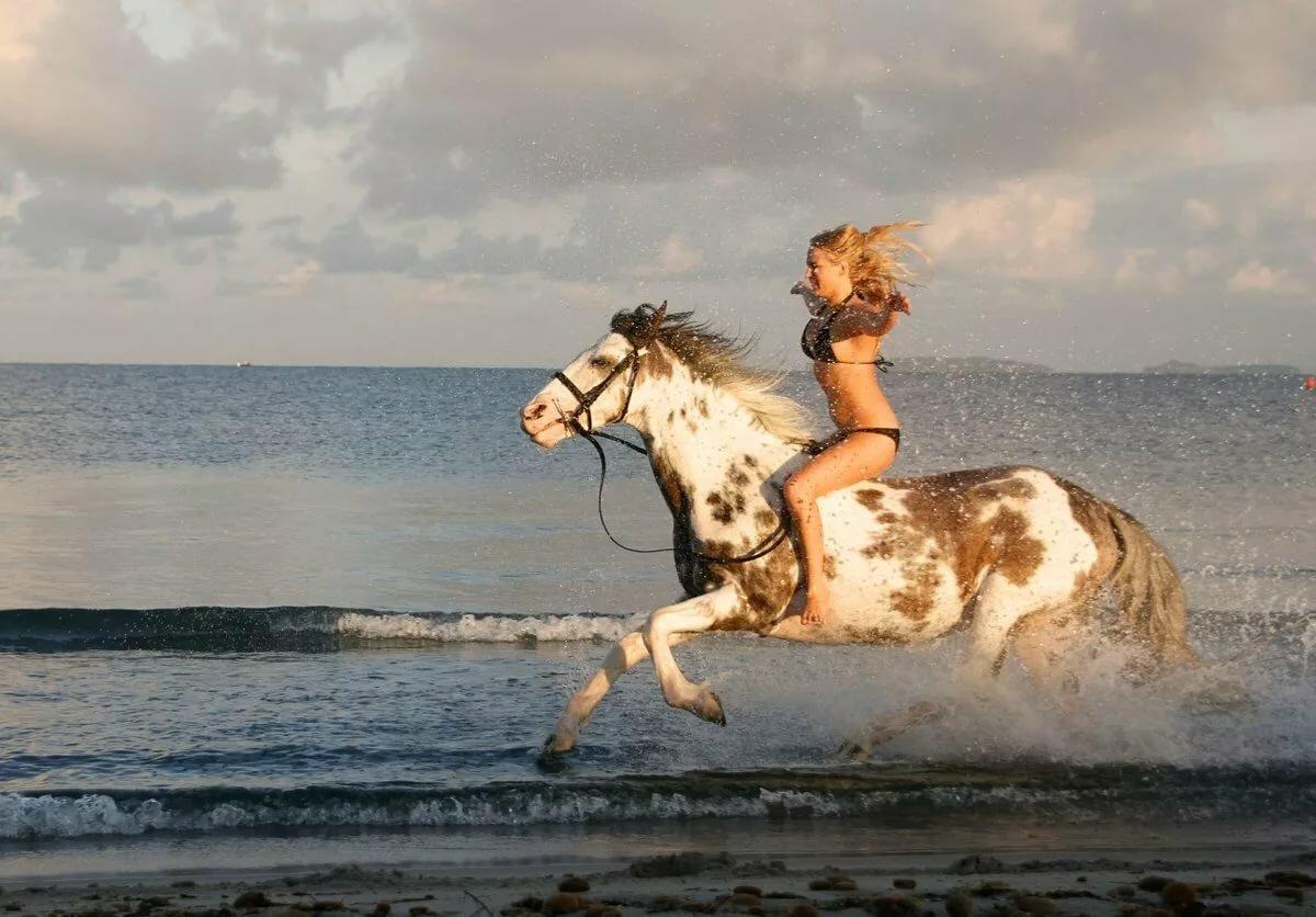 цвета, а кони все бегут картинки люблю тебя