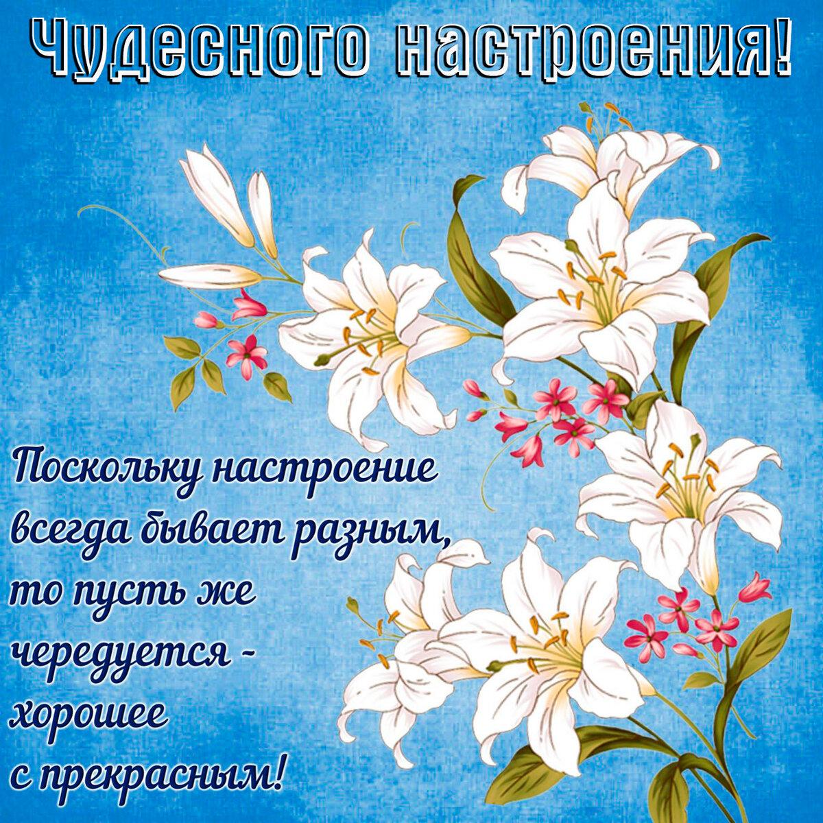 открытки с цветами и пожеланиями хорошего настроения свои выбор этом