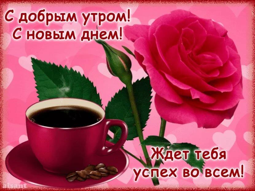 Дня открытка, красивая открытка с добрым утром любимой девушке и хорошего дня